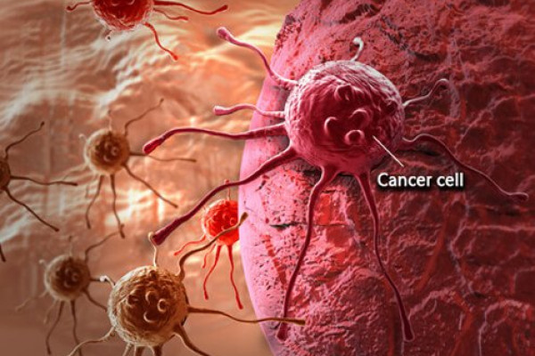 Let's Talk About Cancer  – Community Pharmacists Image